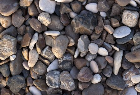various colored small river stones and shells Stock Photo - 9313347