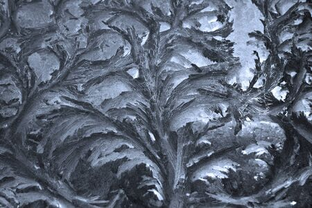 ice floral pattern on window in a cold winter day Stock Photo - 9310122