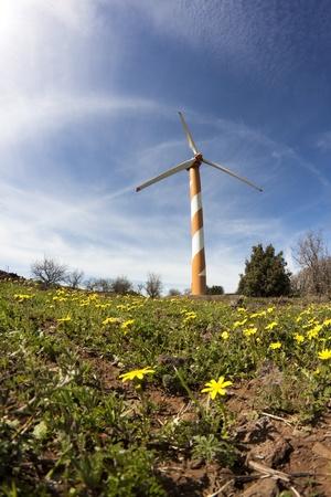 oranje windturbine met yelloy bloemen en blauwe lucht Stockfoto