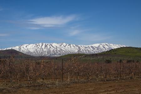 Syryjski: Wzgórza Golan z góry hermon pokryte śniegiem granica syryjski