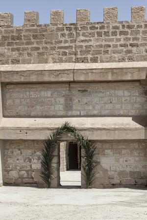 embellished: Beautiful embellished gate of an old building