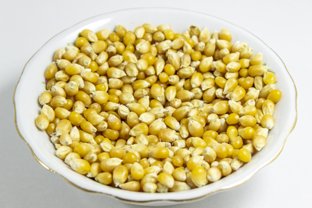 Close shot of multiple corn seeds in the white cup Фото со стока