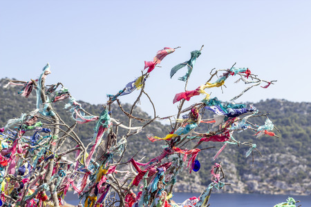 Colorful scarfs are hanged on the branches of tree for the purpose of oblation with blue background