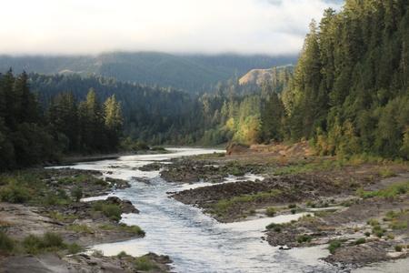 Mountain River Fog Near Tyee,OR Stock Photo