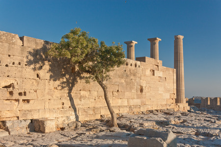 Wall of ancient greek acropolis near grow the tree.