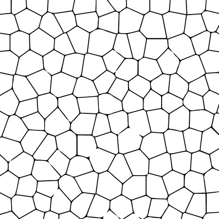 Black and white texture of cracked ground. Vector illustration