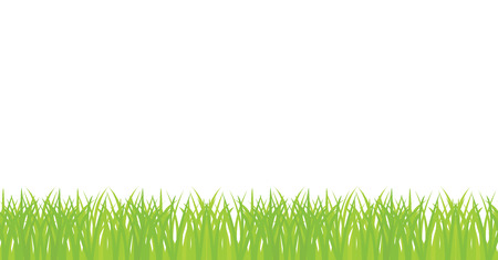 seamless illustration of green grass border Vectores