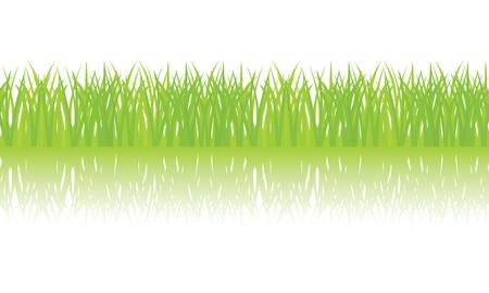 Vector seamless illustration of green grass border Illustration