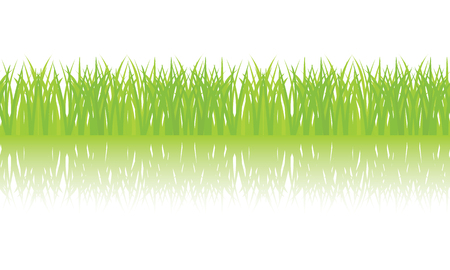 grass border: Vector seamless illustration of green grass border Illustration