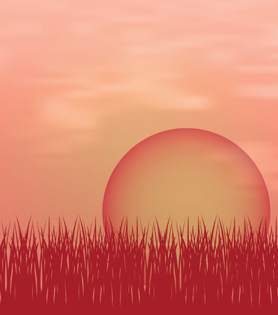non   urban scene: Vector illustration of sunset background with sun and grass