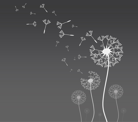 Dandelion silhouette with flying dandelion buds