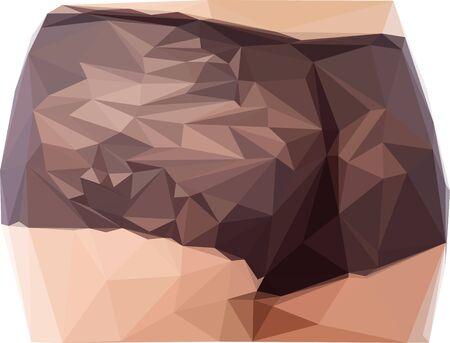 Fesses de femme sexy. Vecteur en low poly