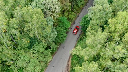 Aerial view of red car driving on country road in forest. Stok Fotoğraf