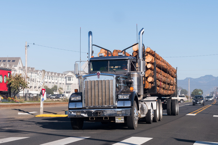 A large truck transports large trunks on the coast of Oregon, USA.
