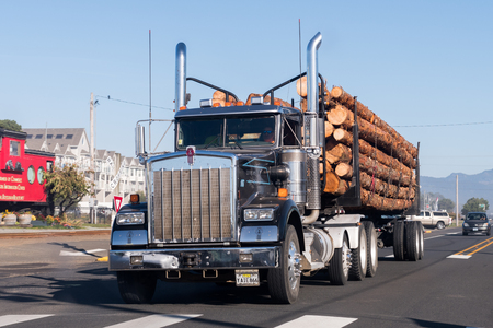 A large truck transports large trunks on the coast of Oregon, USA. Editorial