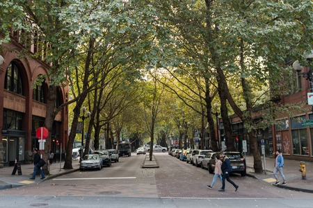 Wooded street in downtown Seattle, Washington, USA.