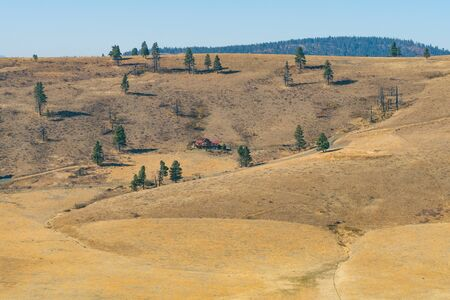 Yellow hillside and some trees of the Hidden Valley in Cle Elum