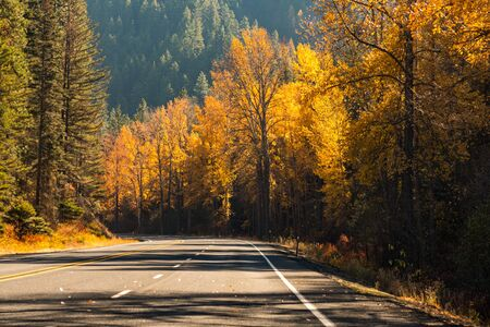 Mountain road surrounded by trees with autumnal colors in Liberty Banque d'images