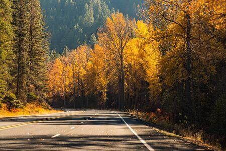 Route de montagne entourée d'arbres aux couleurs automnales en Liberté Banque d'images