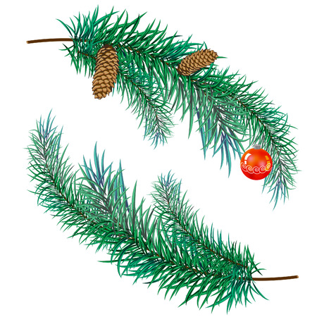 fir cones: pine branch with cones and toy Illustration