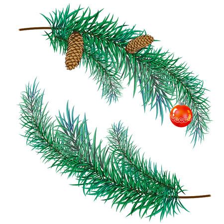 fir cone: rama de pino con conos y juguetes