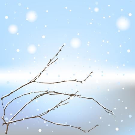kale: De winter achtergrond draad