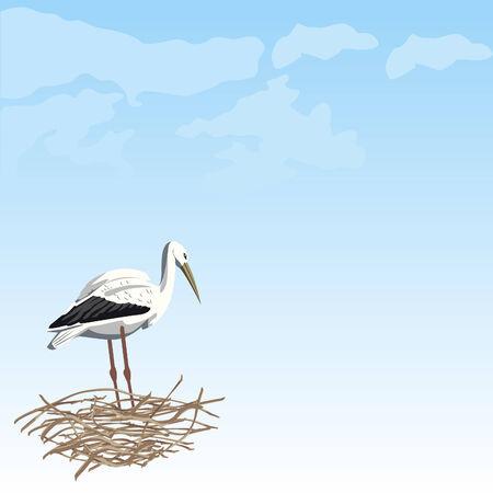 White stork in a nest Stock Vector - 8331808