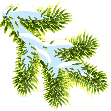 Fir branches under the snow Stock Vector - 8377320