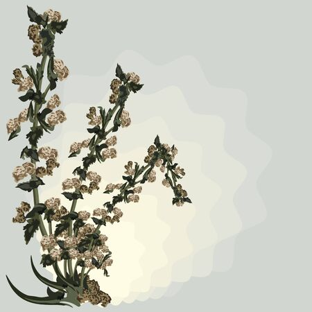 death and dying: dead sapless plant background illustration in vector format