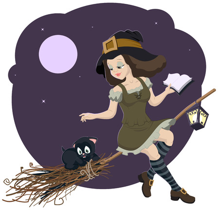 Beautiful young witch broom with cat Vector