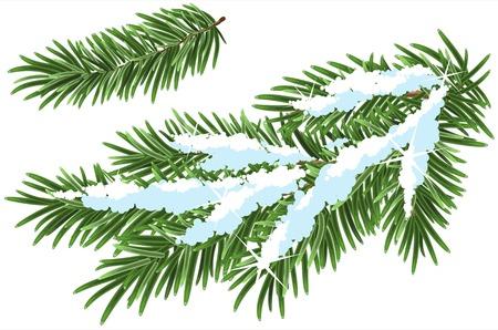 Fur-tree branch under snow. Illustration in vector format Stock Illustratie