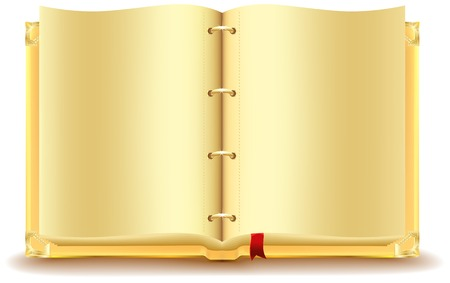 Open gold book. Illustration in vector format