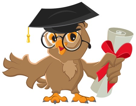 One owl diploma.  Vector