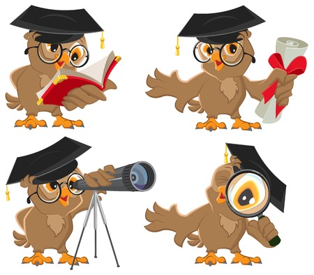 graduacion caricatura: Conjunto búho. Ilustración en formato vectorial aislado