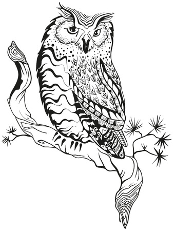 sits: Owl sits on tree branch. Graphic design. Illustration in vector format Illustration