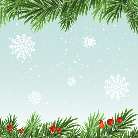 spruce: Spruce branches background. Christmas background. Illustration in vector format