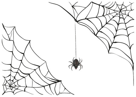 Spiderweb. Big black spider web. Black scary spider of web. Poison spider. Illustration in vector format