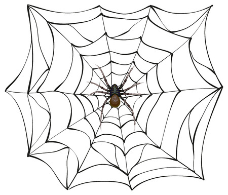 Spiderweb. Big spider web. Scary spider of web. Poison spider. Illustration in vector format Vettoriali