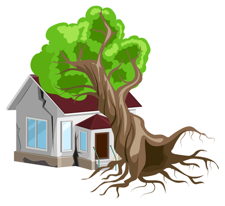 fell: House destroyed. Tree fell on house. Cracks in walls of home. Property insurance. Isolated on white vector illustration Illustration