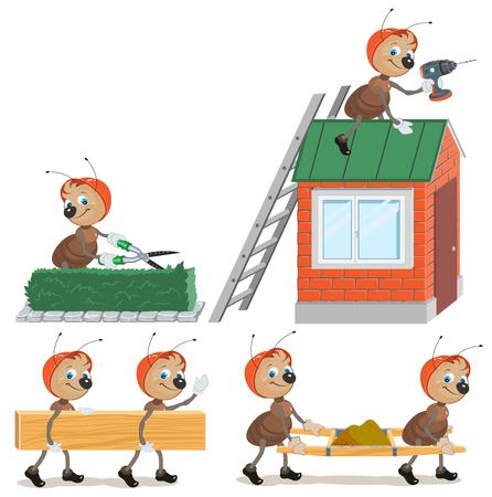 hormiga hoja: Establecer Trabajador de la hormiga. Aislado en blanco Vectores