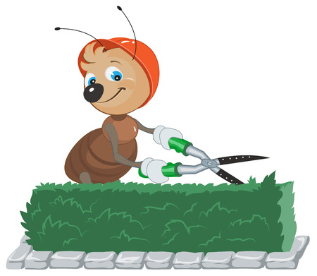 Ant Gardener cuts bush. Gardener with scissors cuts the leaves. Isolated on white illustration