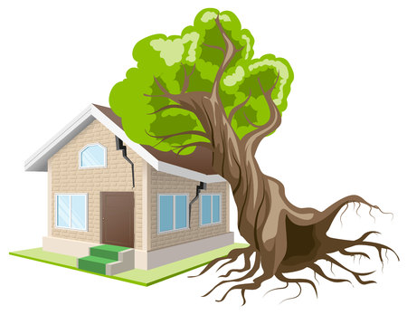 Tree fell on house. Home insurance. Isolated illustration in vector format