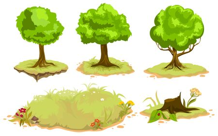 Set of deciduous trees. Isolated illustration in vector format