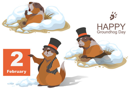 Happy Groundhog Day. Marmot holding February 2. Illustration in vector format Stock Illustratie