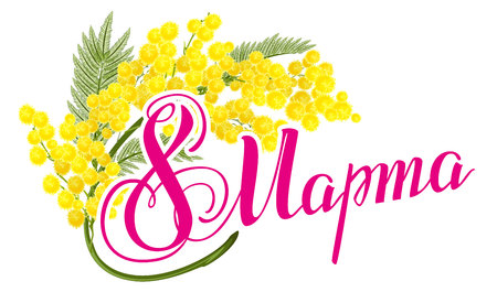 March 8 Russian lettering text. March 8 International Womens Day. Yellow mimosa flower. Mimosa flower symbol of Womens Day. Isolated on white illustration