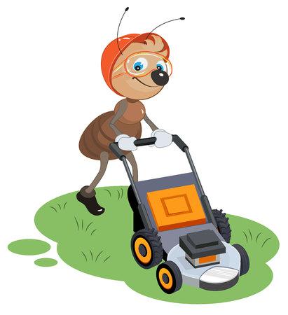 hormiga caricatura: Ant jardinero siega del césped. Jardinero y cortadora de césped. ilustración de dibujos animados en formato vectorial
