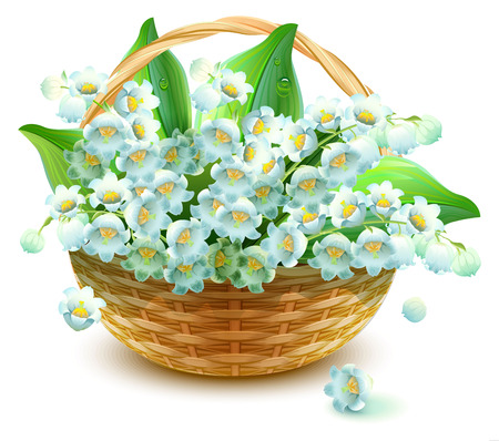 valley: Wicker Basket of flowers. Flower lily valley. Bouquet lily of valley. Isolated on white vector illustration