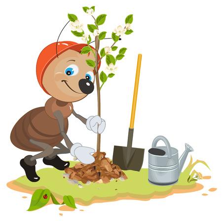 hormiga caricatura: Ant plantación de árboles jardinero. árboles frutales plántulas. Manzana árbol joven. ilustración de dibujos animados en formato vectorial