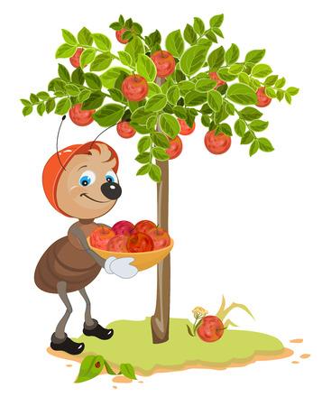 Ant Gardener raccogliere le mele. melo e mele rosse mature. Frutteto. Illustrazione del fumetto in formato vettoriale