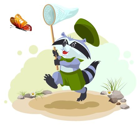 entomologist: Scout raccoon butterfly catches. Entomologist with butterfly net. Summer leisure. Cartoon illustration in vector format